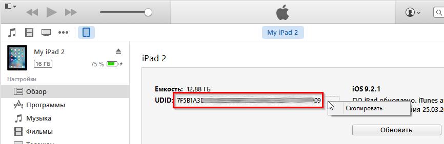 Получение UDID на iPhone